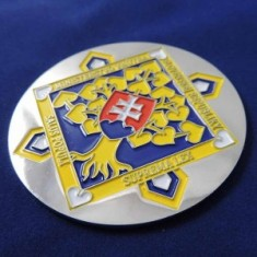 Odznak kovový 3D MINV